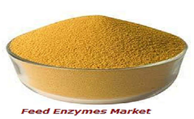 Feed Enzymes Market is anticipated to Register 9.54% CAGR through 2023