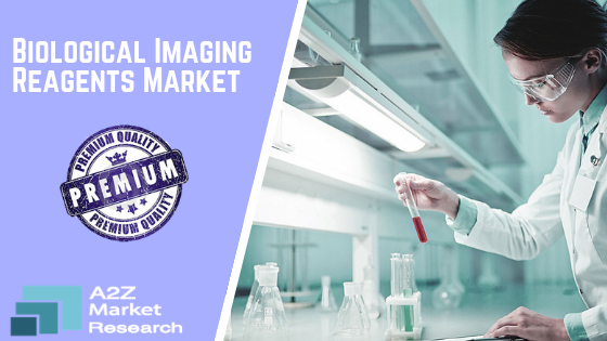 Know about Biologic Imaging Reagents Market growth in New Research and Know about its Top growing factors by Key Companies like Bayer Healthcare, Beckman Coulter, Bracco Imaging, Cardinal Health, Johnson and Johnson, Philips Healthcare