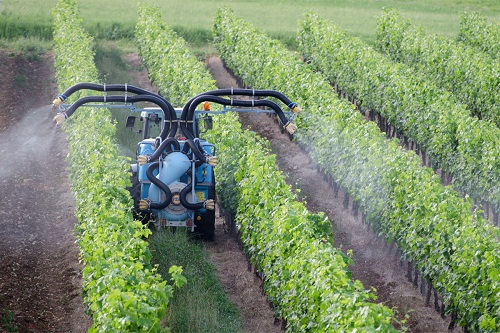 Global Chlorpyrifos Market Status and Future Forecast up to 2024