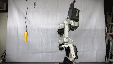 Exoskeleton Market, Exoskeleton Research Report, Global Exoskeleton Industry Analysis, Global Exoskeleton Market Research Report, Global Exoskeleton Research Report