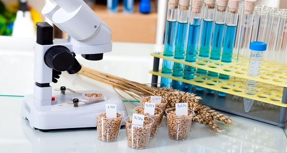 Global Food Safety Testing Market By Target Tested, By Technology, By Food Tested and By Region, – Industry Size, Share, Growth, Trends and Forecast, 2018-2025