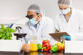 GCC Food Safety Testing Market