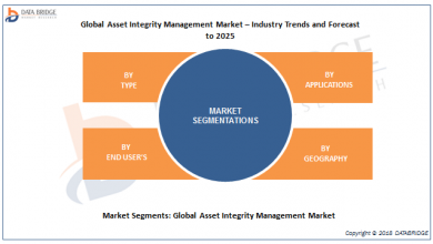 Global Asset Integrity Management Market – Industry Trends and Forecast to 2025