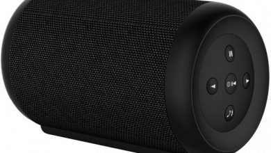 Global Bluetooth Speaker Market