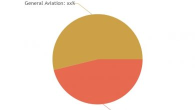 Global Commercial Aircraft Collision Avoidance Systems Sales Market