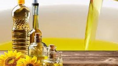 Global Cooking Oil Market