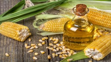 Global Corn Oil Market