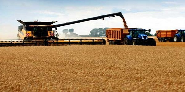 Global Grain Harvesting Machines Market 2019: Growth Factors Details and Competitive Analysis 2025