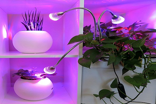 Global Horticultural LED Lighting Market 2019-2025: Hubbell Lighting, General Electric, Osram, Cree, Fionia Lighting