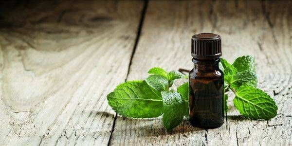 Global Mentha Arvensis Oil Market Competitive Analysis 2014-2018 & Industry Overview 2019-2024