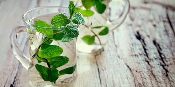 Global Mint Oil Market 2019 Qualitative and Quantitative Assessment By Industry Analysis 2024