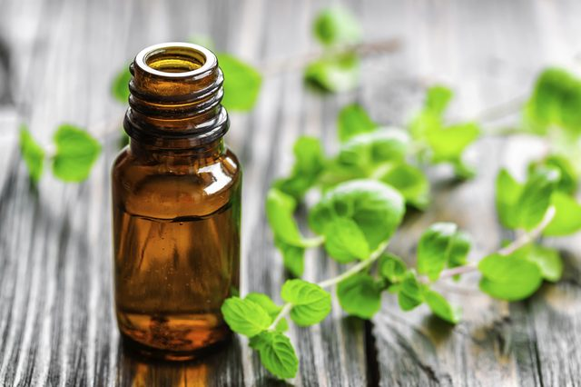 Global Peppermint Oil Market Industry Overview 2014-2018 & Forecasting 2019-2024