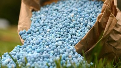 Global Phosphatic Fertilizer Market