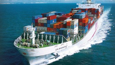Global Sea Freight Forwarding Market