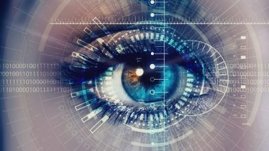 Iris Recognition System Market