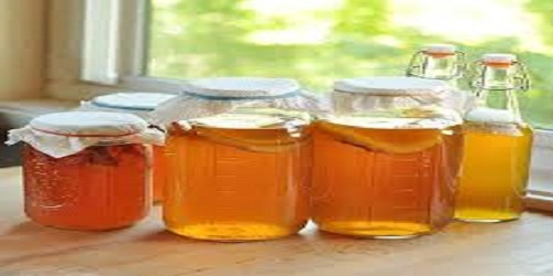 Worldwide Kombucha Market to Grow at a Steady CAGR 2019-2025 | Millennium Products, WILD TONIC, Oregonic Tonic LLC