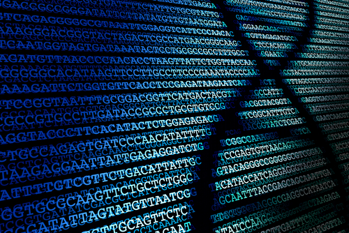 Next Generation Sequencing Market Size, Industry Status Growing with a CAGR of 20.82 % During 2019-2024