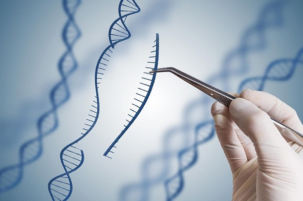 Next-generation Sequencing Market: Business Opportunities, Current Trends, Market Forecast and Global Industry Analysis by 2025