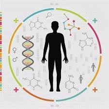 Global Precision Medicine Market 2018 to 2023 – Revenue, Sales, Market Share (%) by Major Players, Types & Applications, Production, Imports & Exports Analysis, and Consumption Forecast