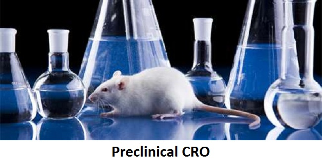 Preclinical CRO Market 2019-2025 with Global Top Key Players