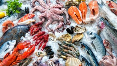 Processed Seafood and Seafood Processing Equipment market