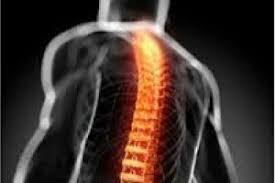 Spinal Trauma Devices market
