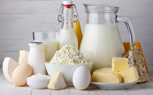 dairy blends market forecast and share 2025