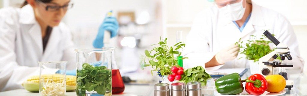 Food Safety Testing Market Research Report 2018; By Market Outlook, Growth Opportunity, Demands,  Trends and Forecast up to 2023