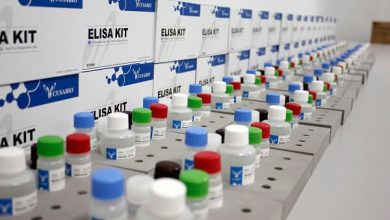 global elisa kits market