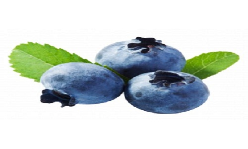 Blueberry Extract Market Set To Rise in the Period from 2019 – 2025 | Bio Botanica, Life Extension, Mazza Innovation
