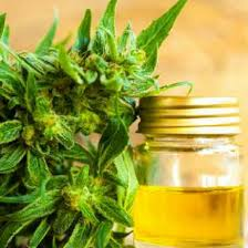 Global CBD Hemp Oil Market Demand, Sales, Opportunities