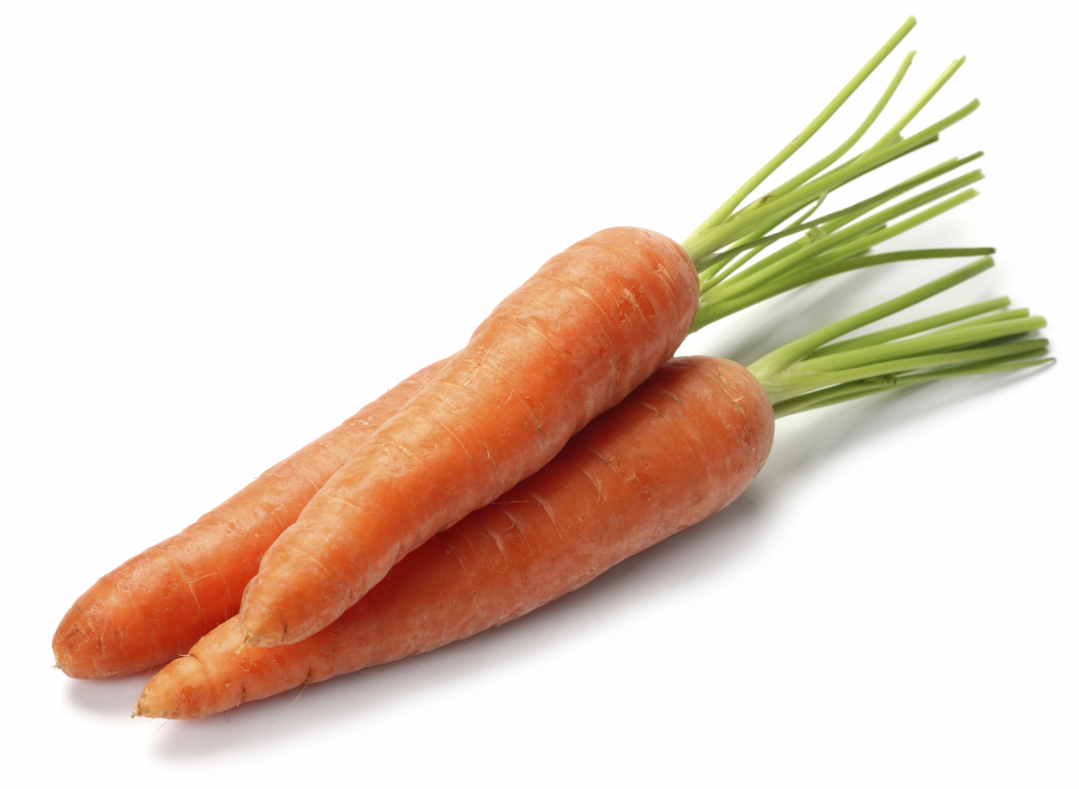 Carotenoids Market Value, Trends, Situation, Sales Area, Competitors, Industry Demand, Scope 2023