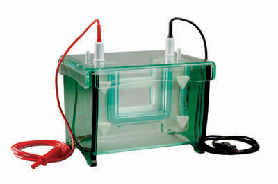 Electrophoresis Units Market Rising Industry trend Offers Growing Business Opportunities -2023 With Top Key Companies- Denville Scientific, Danaher Corporation, Agilent Technologies