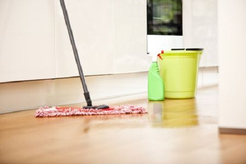 Global Floor Cleaners Market