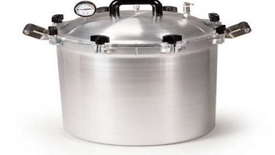Global Autoclave Sterilizer Market