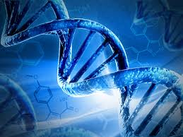 Global DNA Sequencing Market