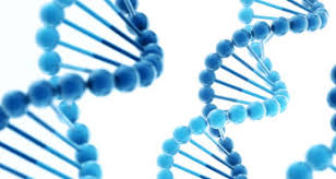 Global Gene Synthesis Market