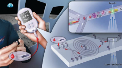 Global Point of Care Molecular Diagnostics Market1