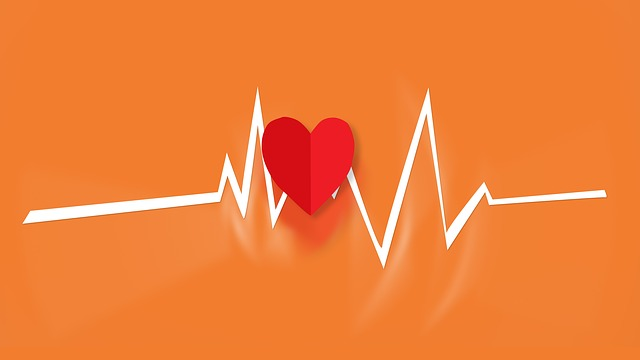 Global Heart Blocks Treatment Devices Market Revenue to Witness Steady Growth Through 2020