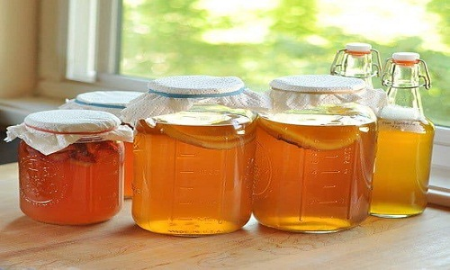 Kombucha Market Current Scenario and Future Growth Analysis by 2023 | Reed's, Equinox Kombucha, American Brewing Company Inc