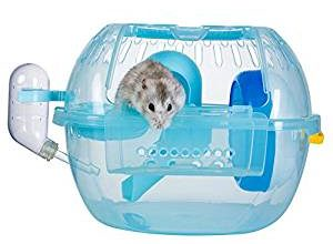 Laboratory Mouse Housing Cage – Honest Version