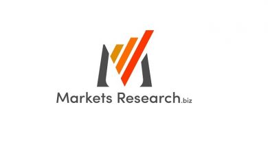 External Gear Motors Market