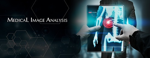 Medical Image Analysis Software