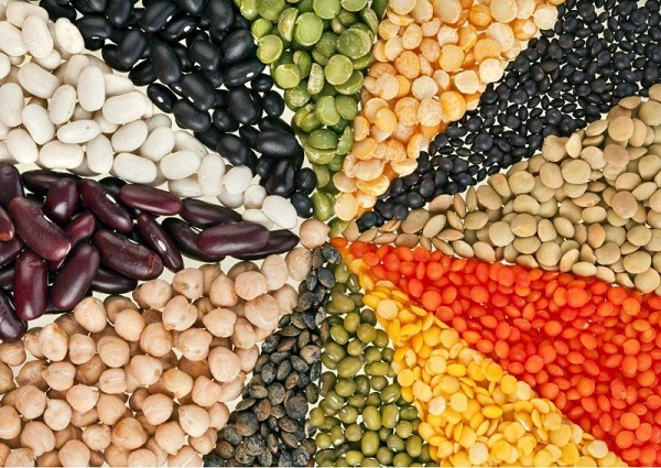 Neutral Alternative Protein Market Business Growth Statistics and Key Players Insights: Kerry Group, Cargill, Archer Daniels Midland Company, Glanbia
