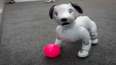 Robotic Pet Dogs Market
