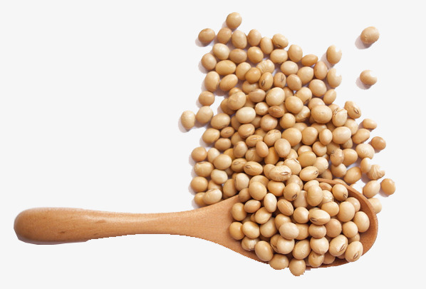 Soy Protein Ingredients Market 2023 Explore Business Opportunities offers Huge Growth by Top Key Players:  DuPont Nutrition & Health, Archer Daniels Midland Company