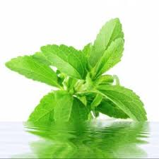 Global Stevia Market Foresight 2018-2023 : Market Size, Production and Import and Export Analysis