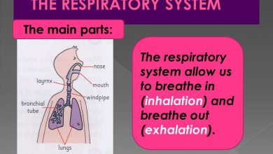 US Inhalation Systems