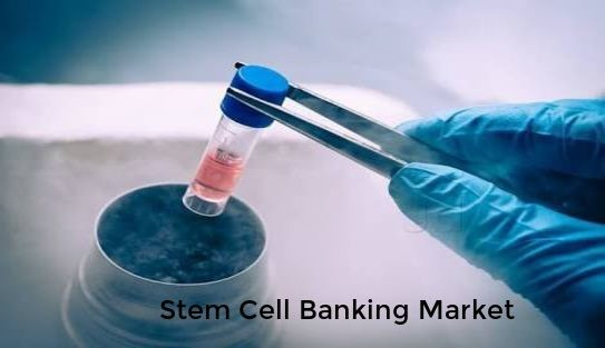 Know in depth about Global Stem Cell Banking Market 2018-2025 Profiling key players like CCBC, CBR, ViaCord, Esperite, Vcanbio, Boyalife, LifeCell, Crioestaminal, RMS Regrow, Cordlife Group, PBKM FamiCord