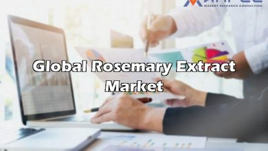 global rosemary extract market